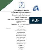 SALPRIETA Y PECHICHE.docx