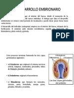 3,1 desarrollo embrionario.pptx