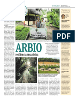 Arbio resiliencia amazónica