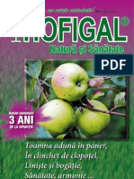 Revista_Hofigal_nr_19