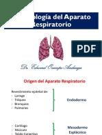 5 Respiratorio