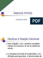 Anexos-Fetais