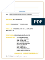 Informe II.doc