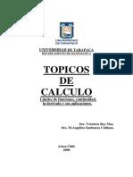 Topicos de Calculos.pdf