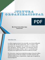 CULTURA-ORGANIZACIONAL-2018.pptx