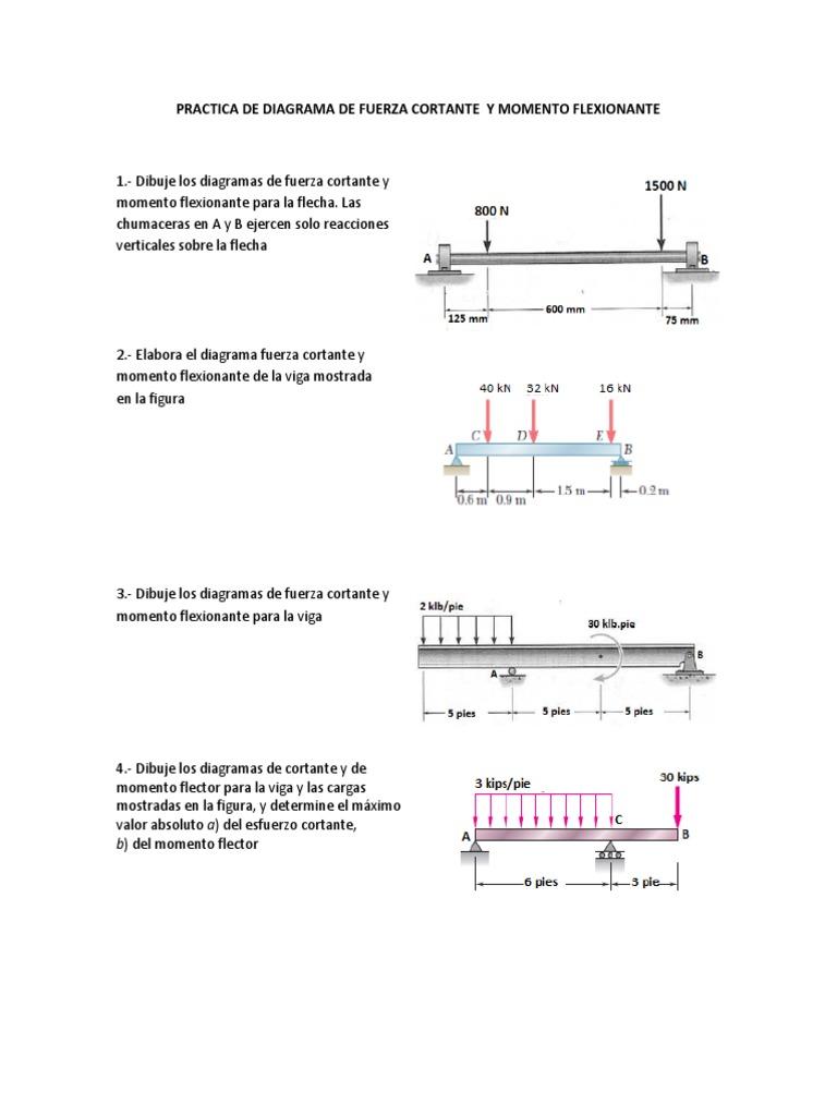 Excelente Diagrama De La Anatomía Gusano Foto - Anatomía de Las ...