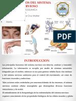 Trastornos Del Sistema Nervioso Marilu (1)