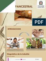 SPANCESTRAL Evaluacion de Proyectos (1)