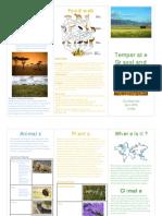 Clio's Grassland Brochure