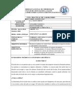 Informe de Acido Urico Analisis