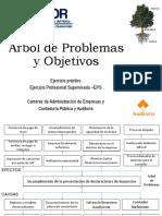 Ejemplo de Arbol de Problemas y Objetivos