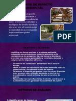 ESTUDIO DE IMPACTO AMBIENTAL-PUENTES