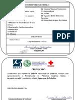 primeiros socorros.pdf