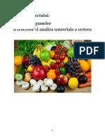 legume.docx