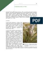 Aspectos generales de la pina.pdf