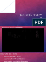 chapter 4 cultures review