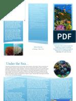 Ellie's Marine Coral Reef Brochure