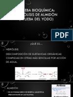 Hidrólisis de Almidón-2