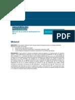 001 HP Handbook Methanol (1)