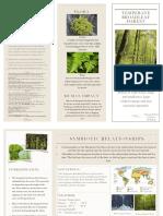 Hannah's Temperate Broadleaf Forest Brochure