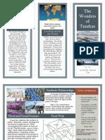 Mairead's Tundra Travel Brochure