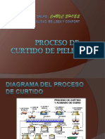 Procesodecurtidodepieles 110402164222 Phpapp02 (1)