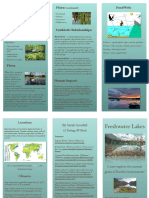 Sarah's Freshwater Lake Brochure
