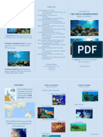 Fiona's Great Barrier Reef Travel Brochure