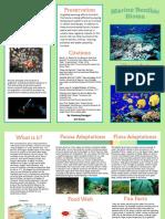 Kunzang's Marine Benthic Travel Brochure