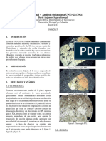 274543483 Informe Basico de Mineralogia Optica Roca Mafica