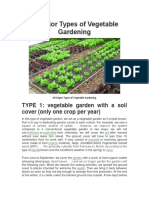 04 Major Types of Vegetable Gardening