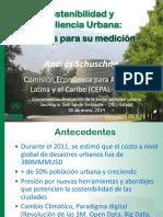 Resiliencia Urbana y Sostenibilidad Andres Schuschny