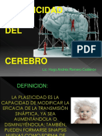 380088971.Plasticidad Neuronal