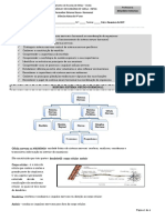docslide.com.br_ficha-de-trabalho-informativa-sistema-nervoso.docx
