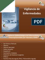 Principales Enfermedades de Salud Publica 3