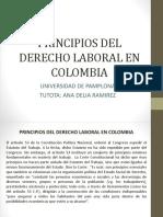 Principios Del Derecho Laboral en Colombia y Relacion Con Otras Areas