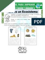 Ficha de Que Es Un Ecosistema Para Tercero de Primaria