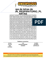 Sopa de Letras de Aparaton Respiratorio Plantas GRADO CUARTO