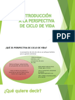 Introduccion Perspectiva Ciclo de Vida