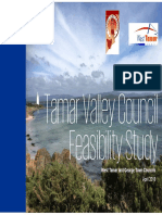 Tamar Valley Council Feasibility Study