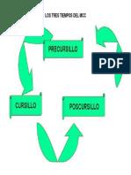 CUADRO - LOS TRES TIEMPOS DEL MCC.docx