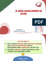 Indikator Area Manajemen Rs (Iam)