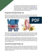 Contoh Pengobatan Untuk Penyakit Fistula Ani