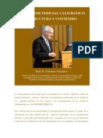 icg.16.sJ-Informe.Pericial.pdf