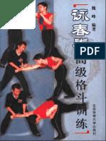 咏春拳高级格斗训练