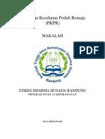 316896448-TENTANG-PKPR.docx