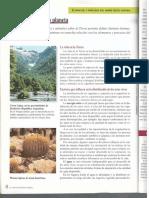 -Biomas-Bertoncello-Santillana.pdf