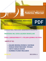 245247396-Pelado-Quimico.doc