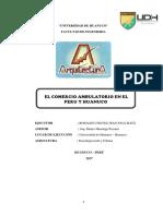 COMERCIO AMBULATORIO
