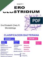 11generoclostridium-130811094233-phpapp01